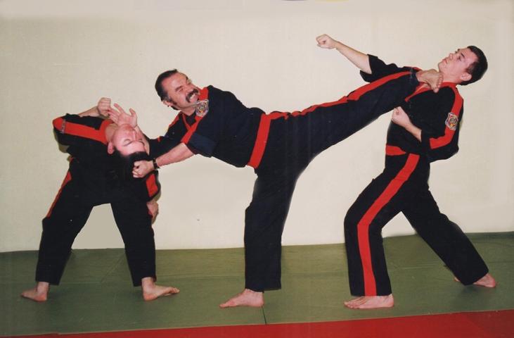 Боевые тренировки в домашних условиях видео